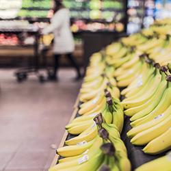 Bananas P3