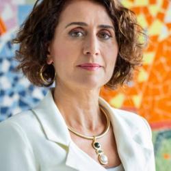 Professor Cristiane  Derani
