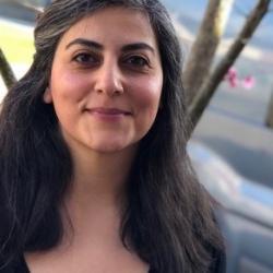 Dr Inanna  Hamati-Ataya
